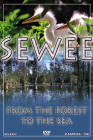 sewee: from the forest to the sea